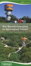 Der Baumkronenpfad im Nationalpark Hainich