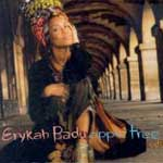 Badu, Erykah - Apple Tree CD 1